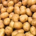 سفارة مصر: لا صحة لما أثير حول عدم جودة البطاطا المصرية المصدرة إلى تونس
