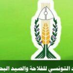 اتحاد الفلاحين : وزارة التجارة تغض الطرف عن التهريب