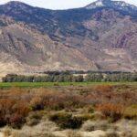 قفصة: هجوم إرهابي على محطّة الإرسال التلفزي بجبل عرباطة