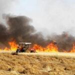 مجاز الباب: اندلاع حريق بمساحات هامّة من الحبوب