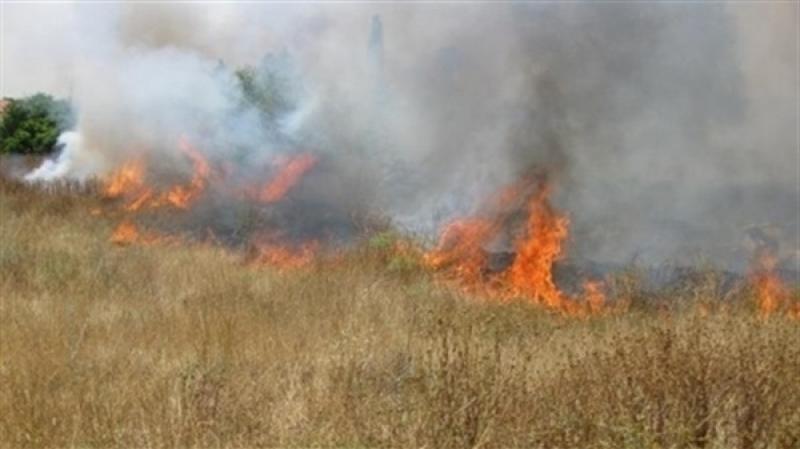 أكد أن الحرائق عمليات إجرامية: الاتحاد يدعو منظوريه لملازمة المزارع