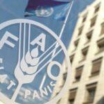 انتخاب تونس عضوا بمجلس المنظمة الأممية للأغذية والزراعة