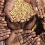 منظمة الزراعة للأمم المتحدة : نصف مليون تونسي يعانون من الجوع !!