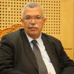 البحيري: نُعوّل على وعي الكتل بالمخاطر لتشكيل المحكمة الدستورية