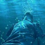 مصرع لاعب مصري غرقا في مياه الإسماعيلية