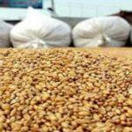 الترخيص للنقل الخاص بنقل صابة الحبوب