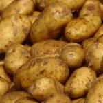 ديوان التجارة: البطاطا المُوردة من تركيا غير فاسدة