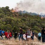 فنّيو الغابات يحذّرون من الحرائق نتيجة ارتفاع درجات الحرارة