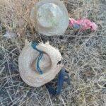 بنزرت: صاعقة رعدية تودي بحياة راعيَيْ أغنام (صور)