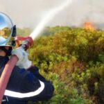 منها إطفاء 86 حريقا: الحماية المدنية تُجري 390 تدخّلا في يوم واحد