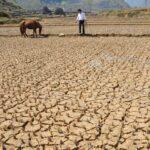 تقرير دولي: تونس مُهدّدة بجفاف حادّ