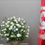 رئيس بعثة الاتحاد الاوروبي يُنوّه بنجاح الانتخابات