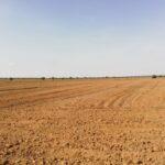 المنستير: استرجاع 134 هكتارا من الأراضي الدّولية الفلاحية