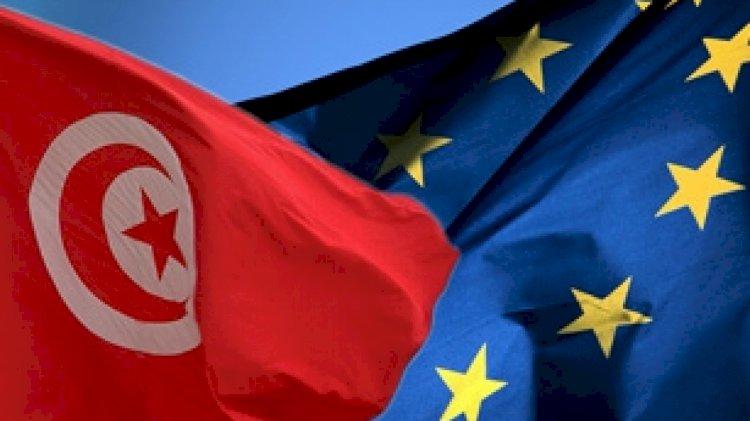 """مجلس أوروبا يمنح تونس صفة """"الشريك من أجل الديمقراطية المحلية """""""