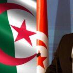 غدا: الشاهد يلتقي رئيس الجزائر ويُسلمه رسالة خاصة من قيس سعيد
