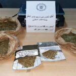 ميناء حلق الوادي: حجز 5 أكياس من مخدّر الماريخوانا لدى مسافر تونسي