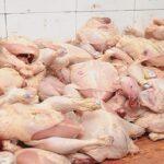 حجز وإتلاف 6.2 أطنان من المواد الغذائية الفاسدة