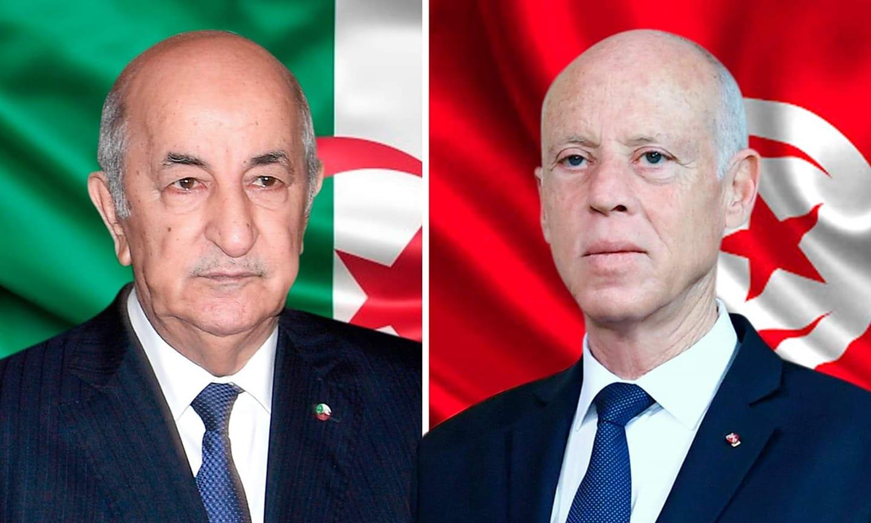 اتفاق بين سعيّد وتبوّن على التعاون لمواجهة تفشي فيروس كورونا