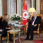 الغنوشي يستقبل مديرة مكتب الأمم المتحدة للمرأة بتونس وليبيا