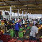 وزارة التجارة :عودة أسواق الجملة للعمل بصفة طبيعية بداية من يوم غد