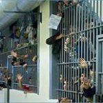 منظمة العفو الدولية تحثّ تونس على خفض عدد السجناء والموقوفين