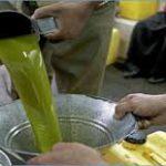 الديوان الوطني للزيت : استئناف بيع زيت الزيتون بـ5600 مليم اللتر
