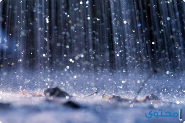 """الغنوشي: أمطار و""""تبروري"""" وخلايا رعدية الليلة وغدا وانخفاض طفيف في درجات الحرارة"""