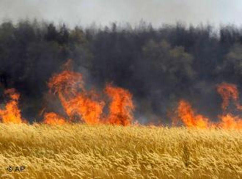 حريقان بباجة ومجاز الباب يلتهمان 8 هكتارات من القمح