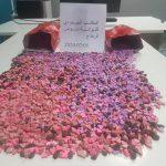 """مطار تونس قرطاج: حجز أكثر من 8000 قرص""""إكستازي"""" (صور)"""