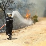 رئيس دائرة الغابات بباجة: حريق جبل صباح التهم مئات الهكتارات