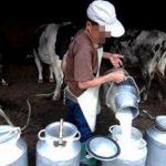 الترفيع في سعر بيع لتر الحليب نصف الدسم عند الاستهلاك