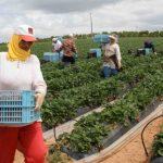 اتّحاد الشغل يدعو الحكومة الى مزيد دعم النساء العاملات