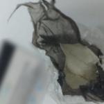 حمام الأنف: إيقاف 5 أشخاص وحجز كمية من الكوكايين