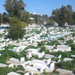 مديرة بوزارة التجهيز: دراسة بـ100 مليون دينار لـ90 مقبرة بتونس الكبرى