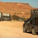 تقرير: المُهرّبون يتسبّبون في خسارة تونس سوق تصدير المنتوجات الفلاحية الى ليبيا