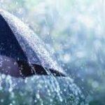 طقس اليوم: درجات حرارة منخفضة وأمطار غزيرة