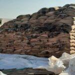 بلحاج رحومة: إحالة ملف إتلاف 17 ألف قنطار من الحبوب على هيئة مكافحة الفساد