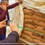 مساعد وكيل الجمهورية بباجة: شُبهات فساد حول صفقات وأجور العملة في قضية القمح الفاسد