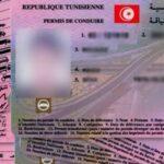 وزارة النقل: مشروع أمر حكومي لمراجعة منظومة العمل برخص السياقة ذات النقاط