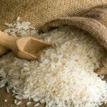 رئيس لجنة الفلاحة:  1200 طن من الأرز السام والمسرطن تم توريدها من باكستان ومُخزنة بحلق الوادي