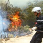 الحماية المدنية: 7 حرائق غابية مازالت متواصلة ونراقب الوضع في الجزائر